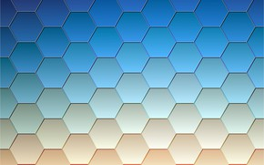 Picture cell, hexagons, blue color