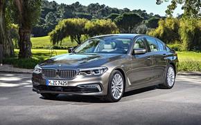 Picture auto, Park, BMW, Luxury Line, Worldwide, Seda
