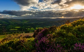 Picture summer, the sky, the sun, clouds, rays, light, sunset, flowers, mountains, clouds, hills, vegetation, the …