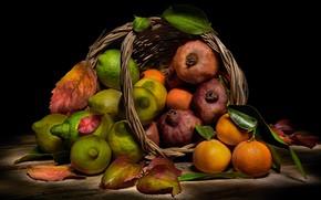 Picture food, fruit, black background, still life, basket, items, a lot, lemons, grenades, composition, tangerines, cuts