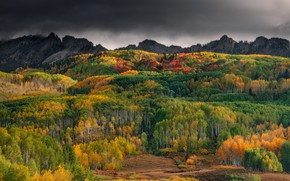 Picture autumn, forest, trees, mountains, overcast, hills, view, height