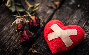 Picture love, heart, roses, red, love, heart, wood, broken, the patch, romantic, broken, roses