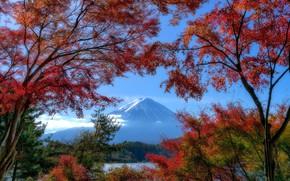 Picture autumn, trees, lake, mountain, Japan, Japan, Mount Fuji, Fuji, Lake Kawaguchi, Lake Kawaguchi, stratovolcano