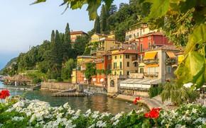 Picture flowers, lake, home, Italy, Petunia, Como, Varenna
