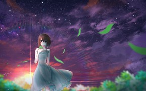 Picture girl, sunset, clover, the night sky