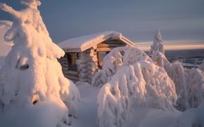 Picture winter, snow, trees, landscape, nature, house, Lapland, Andrey Bazanov