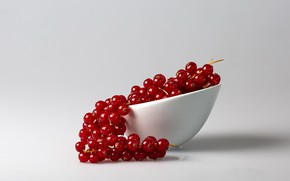 Picture berries, food, currants