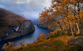 Picture autumn, trees, landscape, clouds, nature, rocks, Norway, the fjord