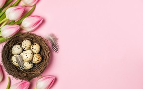Picture holiday, eggs, Easter, tulips, a Christian holiday