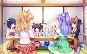Picture Table, Girls, Tea, Nekopara