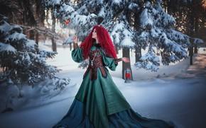 Picture winter, forest, girl, snow, trees, nature, bird, dress, lantern, Александра Шимолина, снеГирь