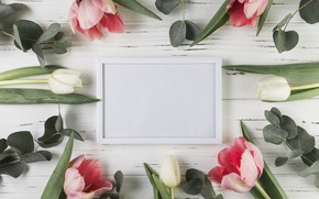 Picture flowers, frame, tulips, pink, white, white, wood, pink, flowers, beautiful, tulips, spring, frame