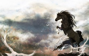 Picture birds, horse, horse