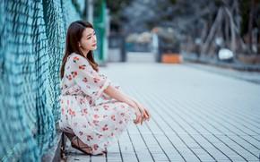 Picture Asian, sitting, bokeh