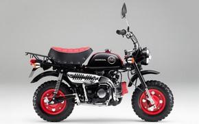 Wallpaper moped, honda, monkey, kumamon, z50, mokik