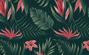 Picture background, texture, Flower, flowers, pattern, Background, Tropical, Pattern