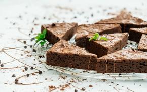 Picture food, cake, dessert, chocolate, Chocolate