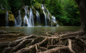 Picture roots, river, tree, France, waterfall, cascade, France, Waterfall Tuffs, Cuisance River, River Quizas, Каскад Де …