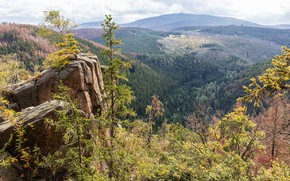 Picture photo, Nature, Germany, Forest, Rock, Hills, Landscape, Lower Saxony