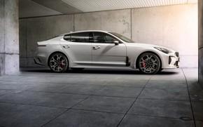 Picture white, side view, KIA, Kia, the five-door, Stinger, Stinger GT, fastback, KIΛ