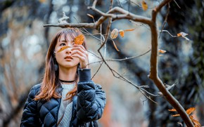 Picture leaves, girl, branches, sweetheart, jacket, Asian, bokeh