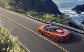 Picture machine, movement, Chevrolet, sports car, convertible, Stingray, Corvette C8