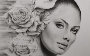 Picture look, girl, portrait, roses, painting, picture a simple pencil