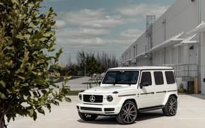 Picture Mercedes, AMG, White, G63, Brick, Sight, W464