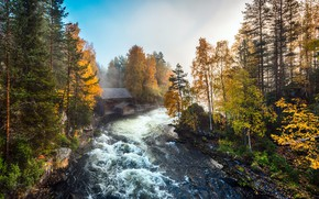Picture Autumn, morning, Myllykoski