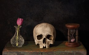 Picture flower, style, the dark background, skull, Tulip, still life, box, items, hourglass, composition, vase