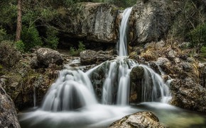 Picture forest, river, stones, waterfall