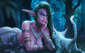 Picture Figure, Tiger, Elf, Art, Pet, Night Elf, World of WarCraft, WarCraft, Illustration, Characters, Tyrande, Tyrande, …