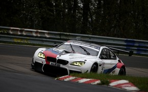 Picture grass, asphalt, trees, coupe, BMW, the fence, 2019, M6 GT3