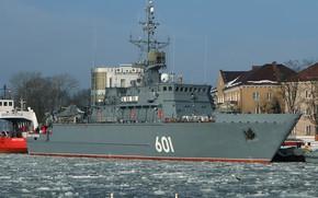 Picture Ivan Antonov, swans, Baltiysk, minesweeper