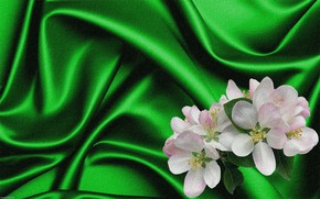Picture rendering, background, collage, figure, picture, canvas, Apple blossoms, green silk, the folds of the fabric, …