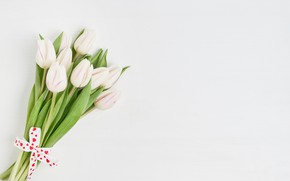 Picture flowers, bouquet, tape, tulips, white, white, flowers, beautiful, romantic, tulips, spring