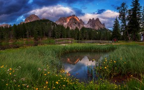 Picture forest, summer, grass, clouds, flowers, mountains, nature, lake, reflection, blue, shore, ate, Alps, meadow, the …