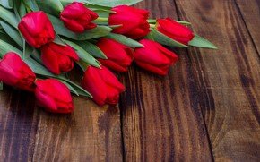 Picture flowers, bouquet, tulips, red, red, fresh, wood, flowers, romantic, tulips, spring