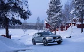 Picture winter, auto, snow, tree, Volvo, V60