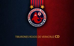 Picture wallpaper, sport, logo, football, Veracruz