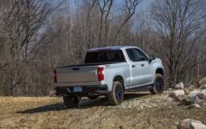 Picture Chevrolet, body, rear view, pickup, Custom, Silverado, 2020