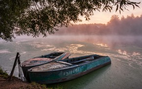 Picture landscape, branches, nature, fog, river, dawn, boats, morning