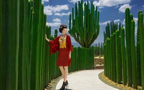 Picture model, Japan, cacti, fashion