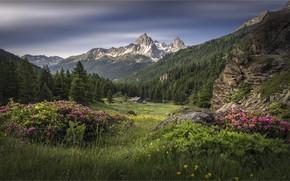 Picture mountains, France, Alps, France, Array De SERS, The Hautes-Alpes