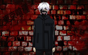 Picture wall, guy, Tokyo Ghoul, Tokyo Ghoul, The Kaneko Ken