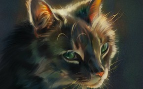 Picture muzzle, green eyes, grey cat, by Pixxus