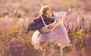 Picture field, summer, flowers, nature, basket, bouquet, cell, dress, chair, girl, baby, child, lupins, Александр Калинин