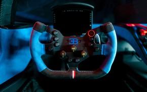 Picture the wheel, Bugatti, salon, Bolide, 2020, suede