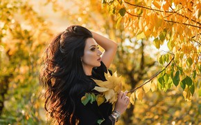Picture pose, brunette, A Diakov George, Girl, autumn, leaves, hair
