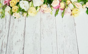 Picture table, roses, bouquet, composition, eustoma